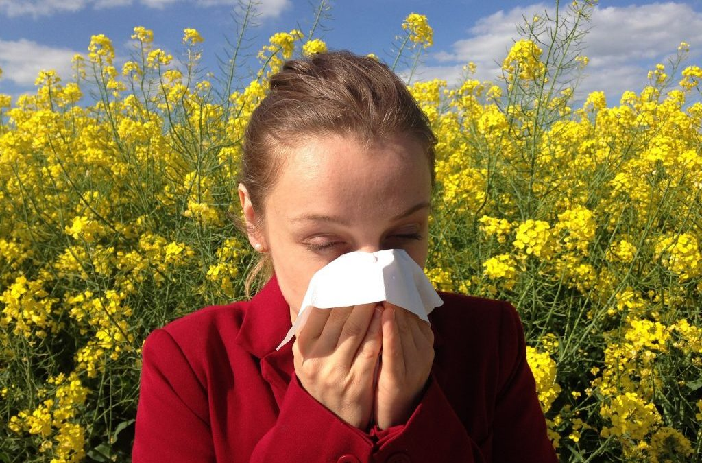 Calgary Holistic Allergy Relief