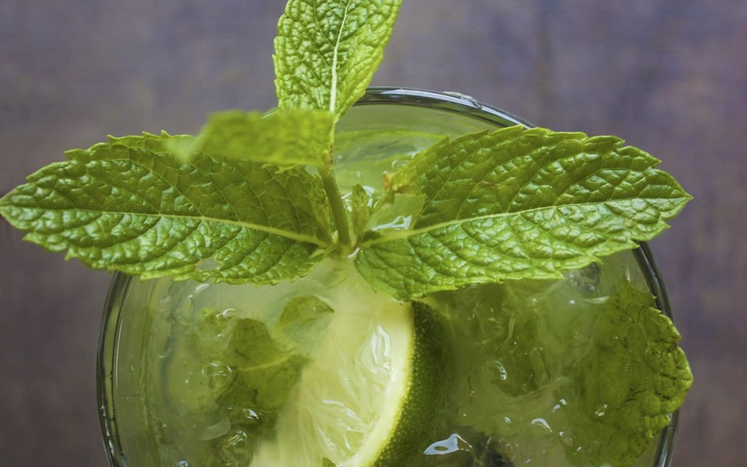 Docere Presents Cucumber Mojito (with aloe)